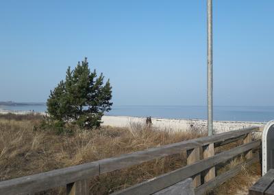 Excursiones Baltico